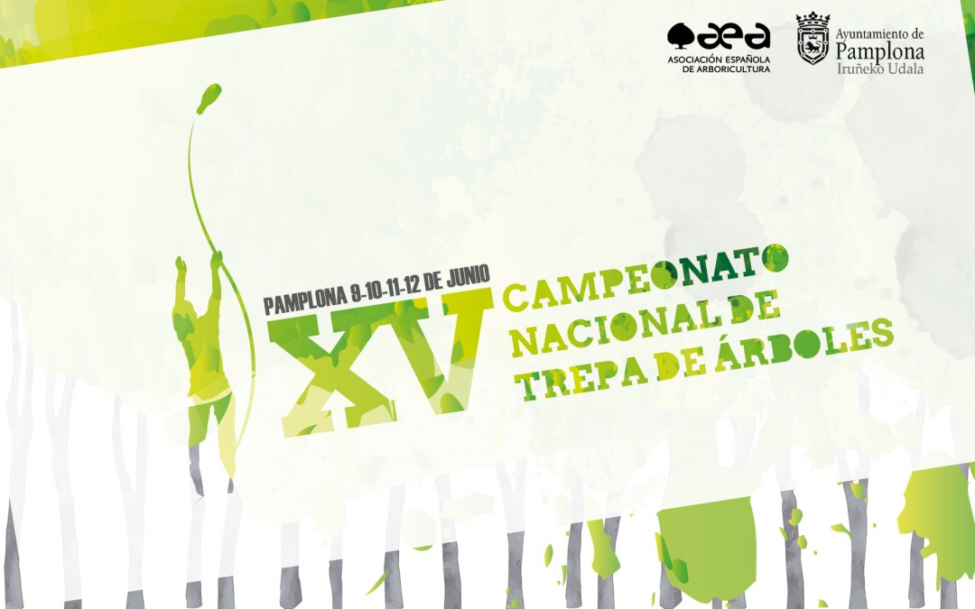 XV Campeonato de trepa: Pamplona
