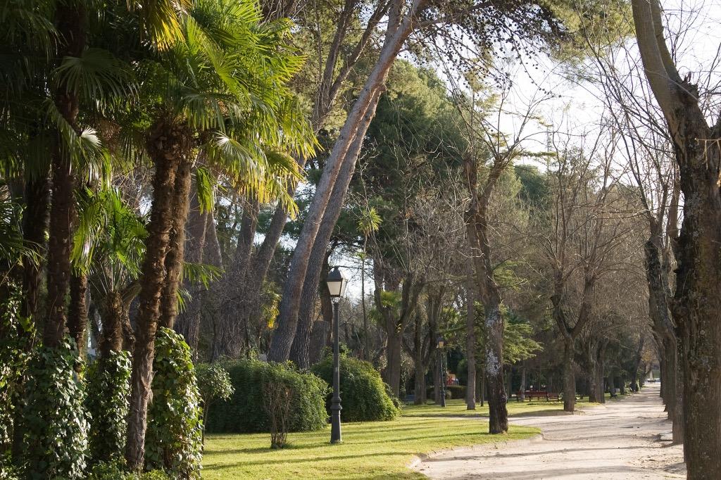 Parque de San Roque (Jesús Ropero)