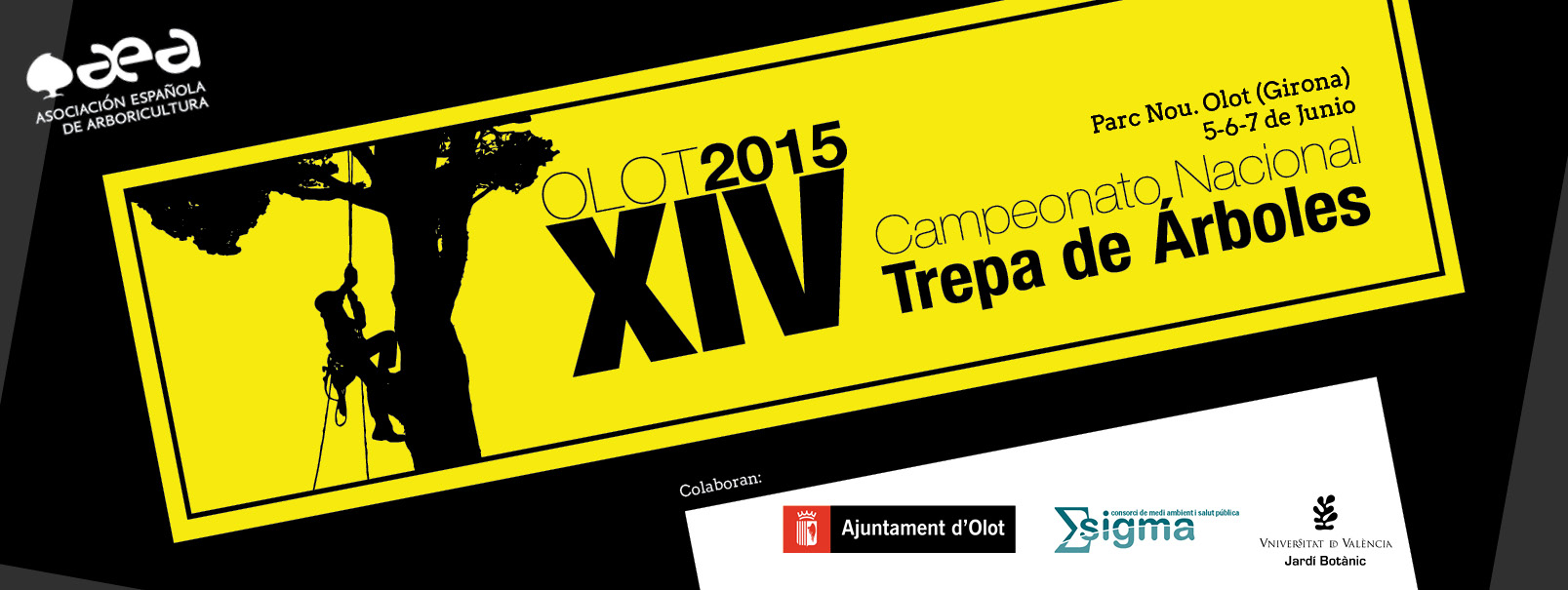 banner web campeonato