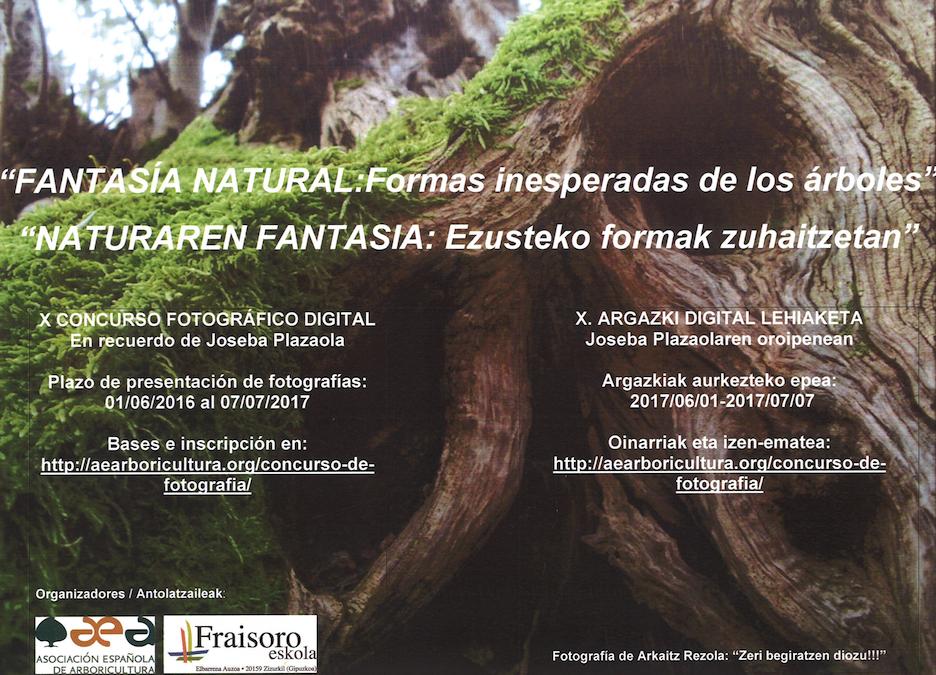 """LANZAMIENTO DEL X Concurso fotográfico """"FANTASÍA NATURAL: Formas inesperadas de los Árboles"""""""