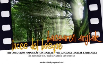 Resultados VIII Concurso de Fotografía 2015: Luces del Bosque