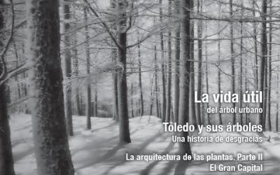 La Cultura del Árbol Nº 73