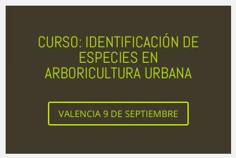 CURSO: IDENTIFICACIÓN DE ESPECIES EN ARBORICULTURA URBANA