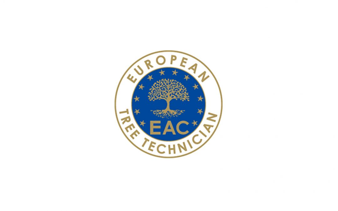 Certificación European Tree Technician 2016