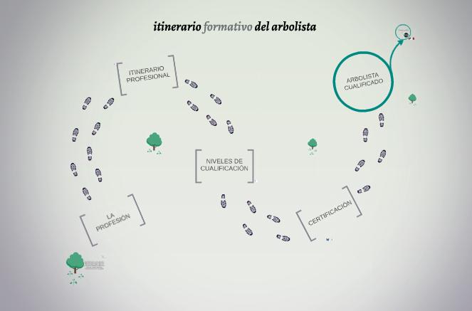 Píldoras inFORMATIVAS: Itinerario formativo del Arbolista