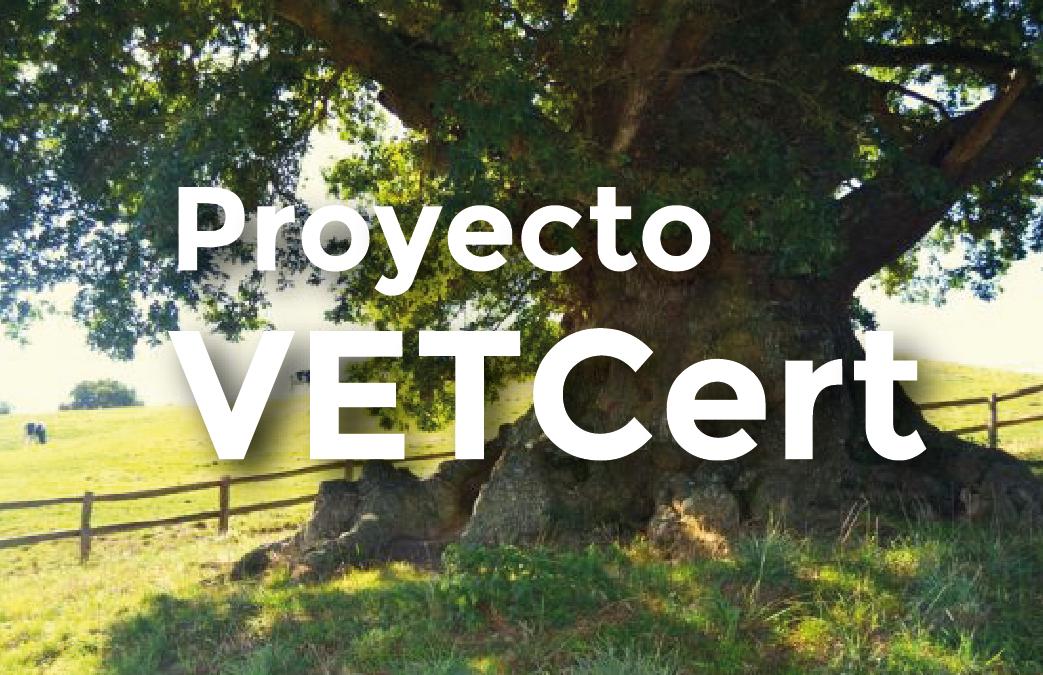 Proyecto Veteran Trees AEA