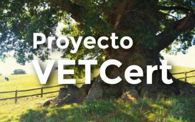 Proyecto VetCert: Definición árbol anciano, veterano y otras