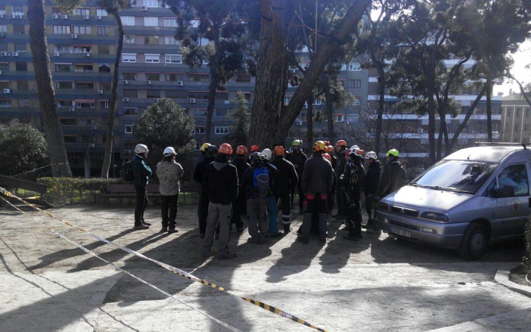 Finalizado Curso de iniciación a la trepa, Madrid 17-18 de febrero