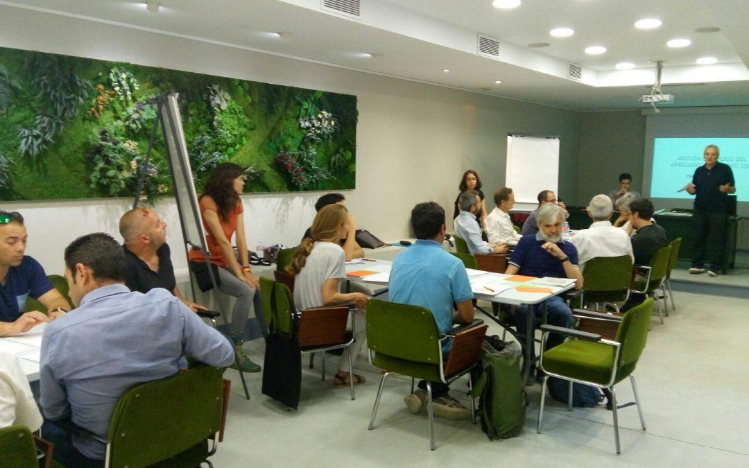 Reunión de expertos para la evaluación de riesgo del arbolado urbano