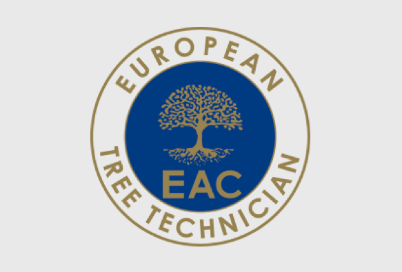Convocatoria European Tree Technician 2017 – Valencia 24-25 de noviembre