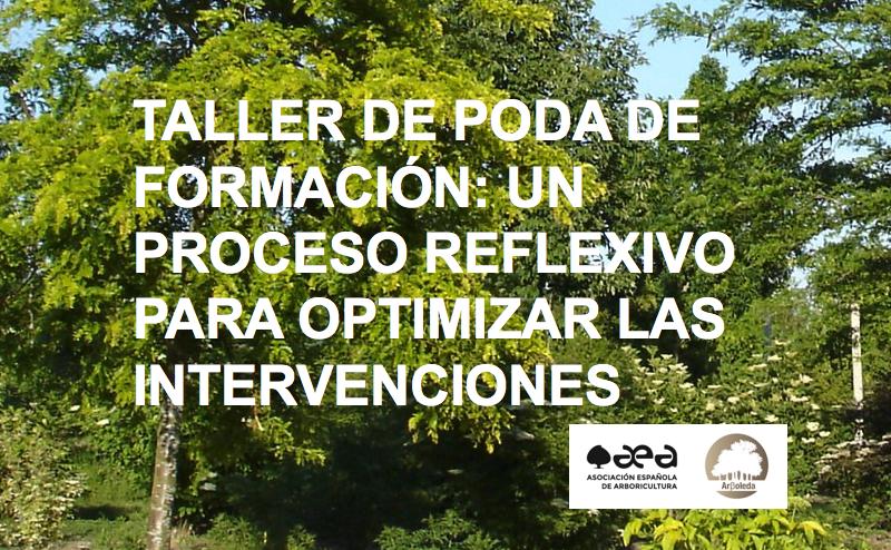 TALLER DE PODA DE FORMACIÓN: UN PROCESO REFLEXIVO PARA OPTIMIZAR LAS INTERVENCIONES