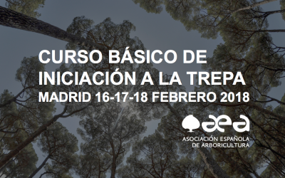 AGOTADAS LAS 12 PRIMERAS PLAZAS DEL CURSO BÁSICO DE TREPA DE MADRID: NUEVAS PLAZAS ABIERTAS