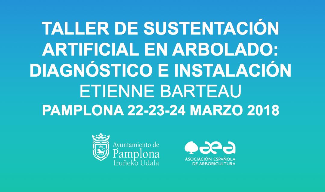 TALLER DE SUSTENTACIÓN ARTIFICIAL EN ARBOLADO: DIAGNÓSTICO E INSTALACIÓN. PAMPLONA 22-23-24 MARZO 2018