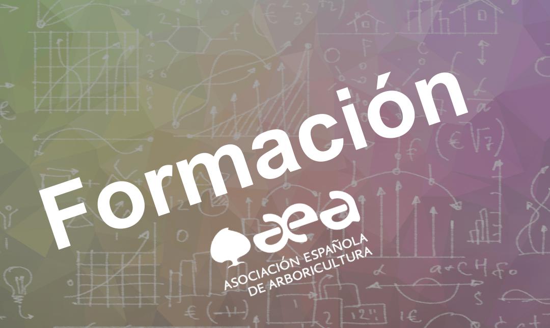 Web AEA: Nuevo apartado de Formación