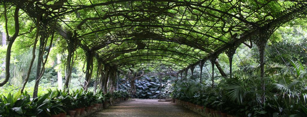 jardin-botanico-1.jpg_789209696