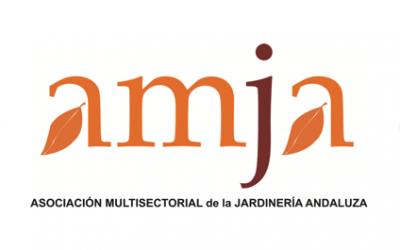 AMJA: Formación reconocida por la AEA