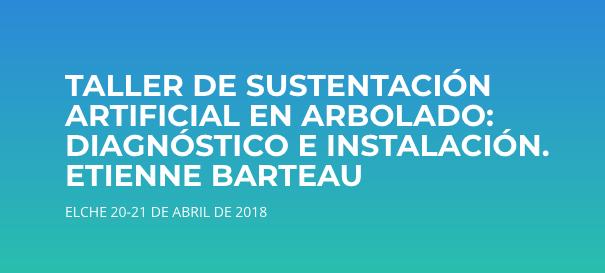 TALLER DE SUSTENTACIÓN ARTIFICIAL EN ARBOLADO: DIAGNÓSTICO E INSTALACIÓN. ELCHE 20-21 DE ABRIL DE 2018