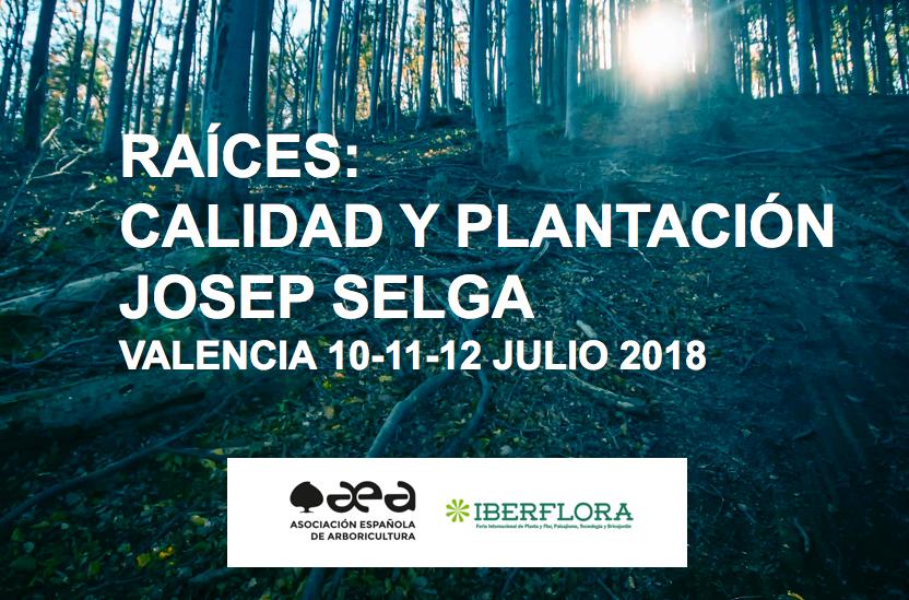 CURSO RAÍCES, CALIDAD Y PLANTACIÓN. JOSEP SELGA. VALENCIA 10-11-12 JULIO 2018