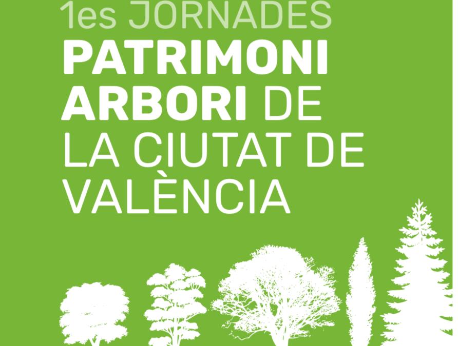 TREE CLIMBERS AEA EN LAS JORNADAS DE PATRIMONIO ARBÓREO DE LA CIUDAD DE VALENCIA