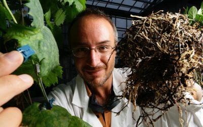 Stefano Mancuso, ponente del Congreso Nacional de Arboricultura