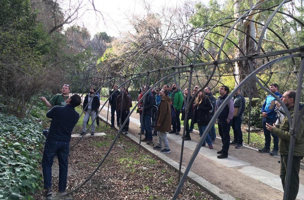Taller de evaluación de horquillas en Arboricultura