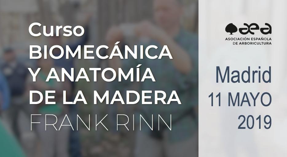 CURSO: BIOMECÁNICA Y ANATOMÍA DE LA MADERA. FRANK RINN. MADRID 11 DE MAYO