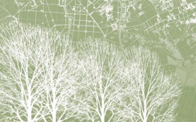 """El libro 'El árbol Urbano', premio Juan Julio """"Mención Especial""""."""