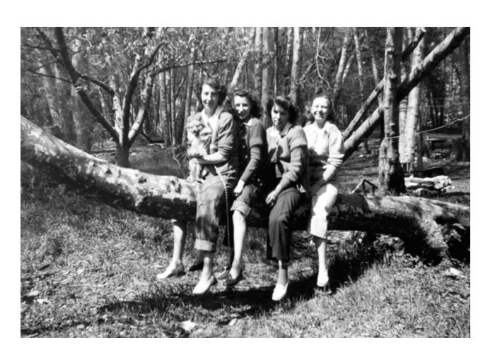 La exposición Women in trees, en el Campeonato de trepa