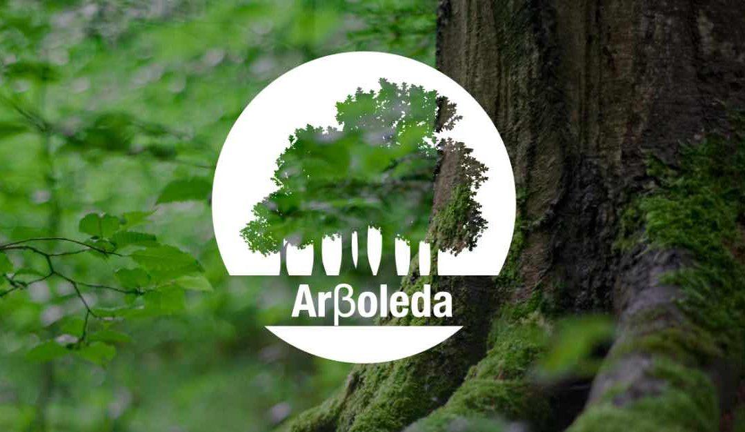 Arβoleda estará como patrocinador de la prueba de ASCENSO en el Campeonato de trepa 2019