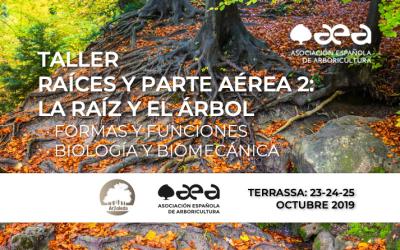 TALLER RAÍCES Y PARTE AÉREA 2: LA RAÍZ Y EL ÁRBOL · FORMAS Y FUNCIONES · BIOLOGÍA Y BIOMECÁNICA. TERRASSA 23-24-25 /10/2019