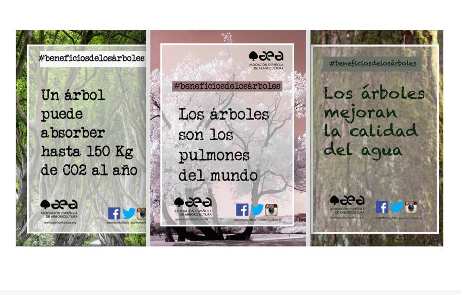 Esperamos vuestras fotografías #beneficiosdelosárboles
