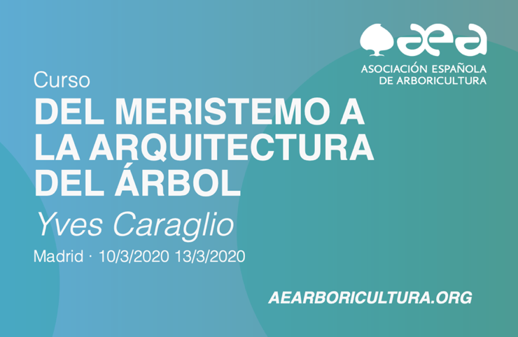 CURSO: DEL MERISTEMO A LA ARQUITECTURA DEL ÁRBOL. Yves Caraglio. MADRID 10-11-12-13 /03/2020