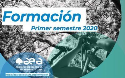 Formación del primer semestre de 2020