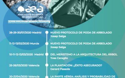 Próximos cursos de formación de la AEA