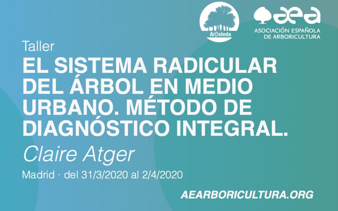 TALLER: EL SISTEMA RADICULAR DEL ÁRBOL EN MEDIO URBANO. MÉTODO DE DIAGNÓSTICO INTEGRAL. CLAIRE ATGER