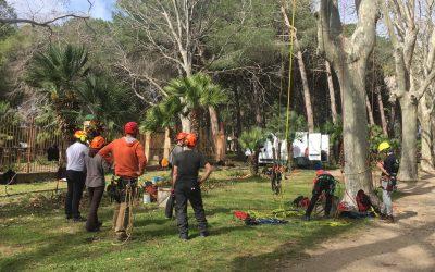 Final de curso intensivo de trepa en Parc Samà