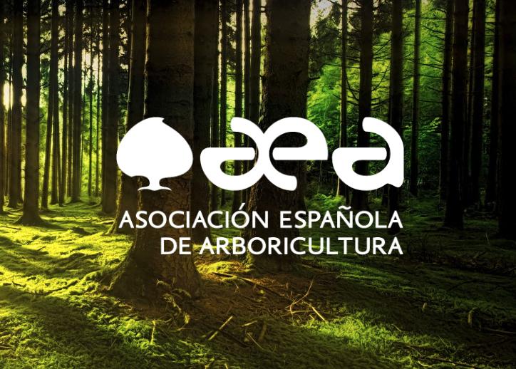 COMUNICADO: Medidas concretas de la AEA frente a la situación excepcional por la propagación del COVID-19