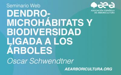 Finaliza el seminario web sobre dendro-microhábitats de Oscar Schwendtner