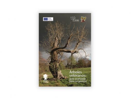 Árboles veteranos: Guía avanzada para su gestión