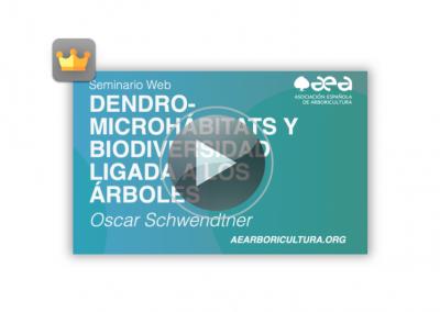 Webinar: Dendro-microhábitats