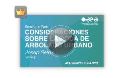 Video del seminario web CONSIDERACIONES SOBRE LA PODA DE ARBOLADO URBANO
