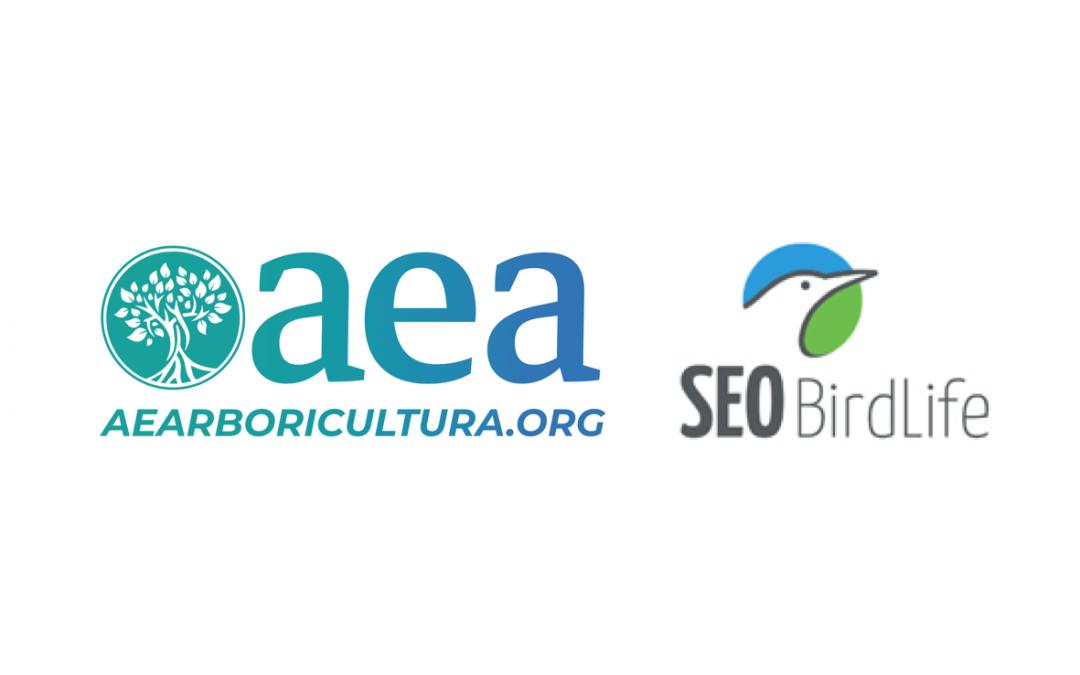 AEA y SEO/Birdlife piden una estrategia de recuperación del arbolado dañado tras el paso de 'Filomena' que tenga en cuenta la biodiversidad