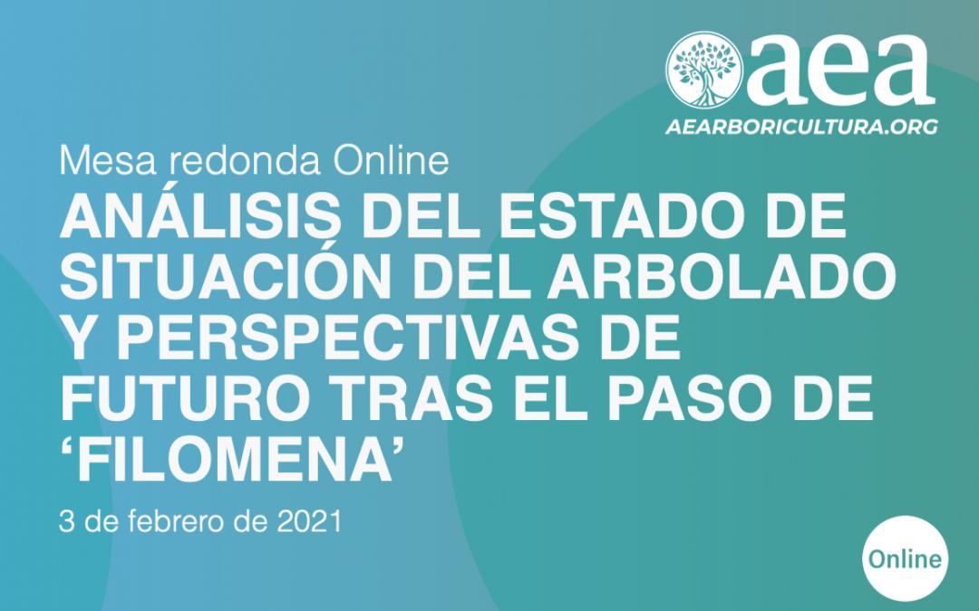 MESA REDONDA ONLINE Análisis del estado de situación del arbolado y perspectivas de futuro tras el paso de 'Filomena'