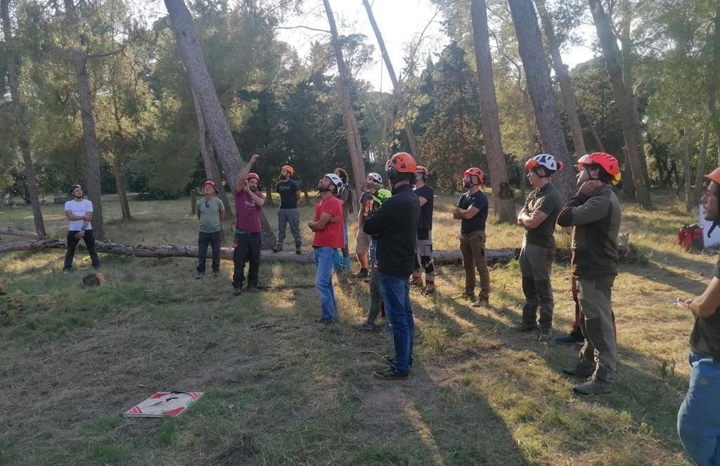 Primera jornada del curso de Técnicas avanzadas de rigging y apeo