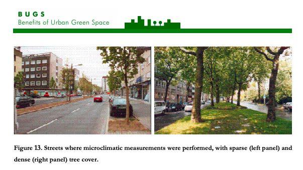 Nueva publicación en 'Por un futuro con árboles: Benefits of Urban Green Spaces